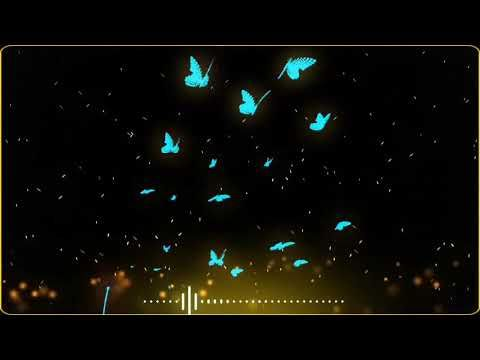 Black Screen Video Effect Download Kinemaster Tutorial Technical Master Vozeli Com