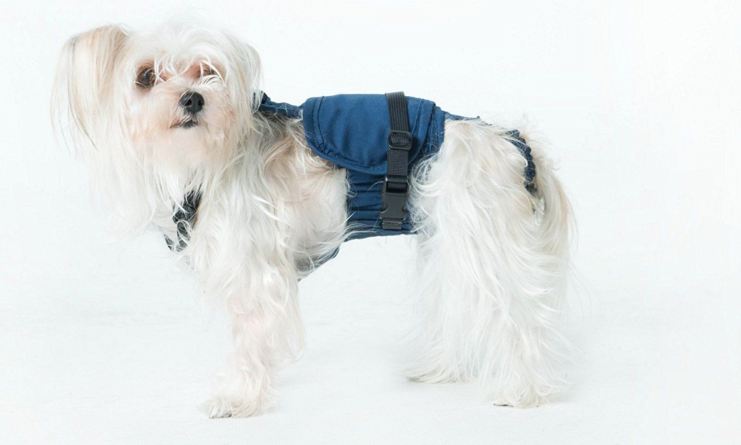 Xs Long Dog Diaper Wrap 6 Pounds To 8 Pounds Redesigned Click