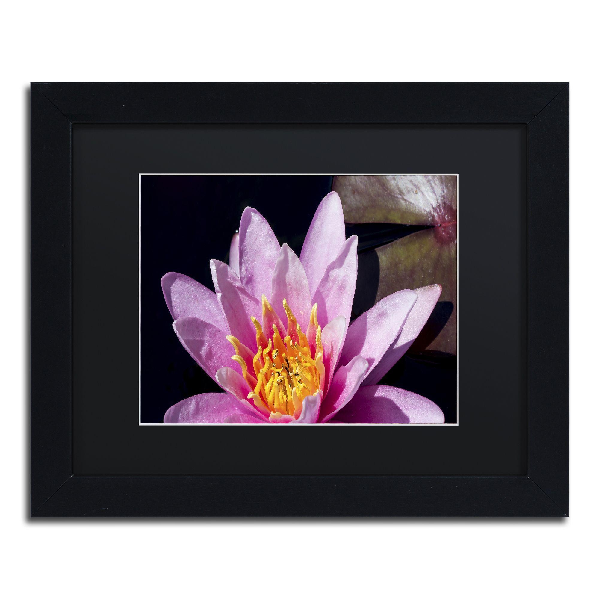 Kurt Shaffer 'Pink Water Lily' Matted Framed Art