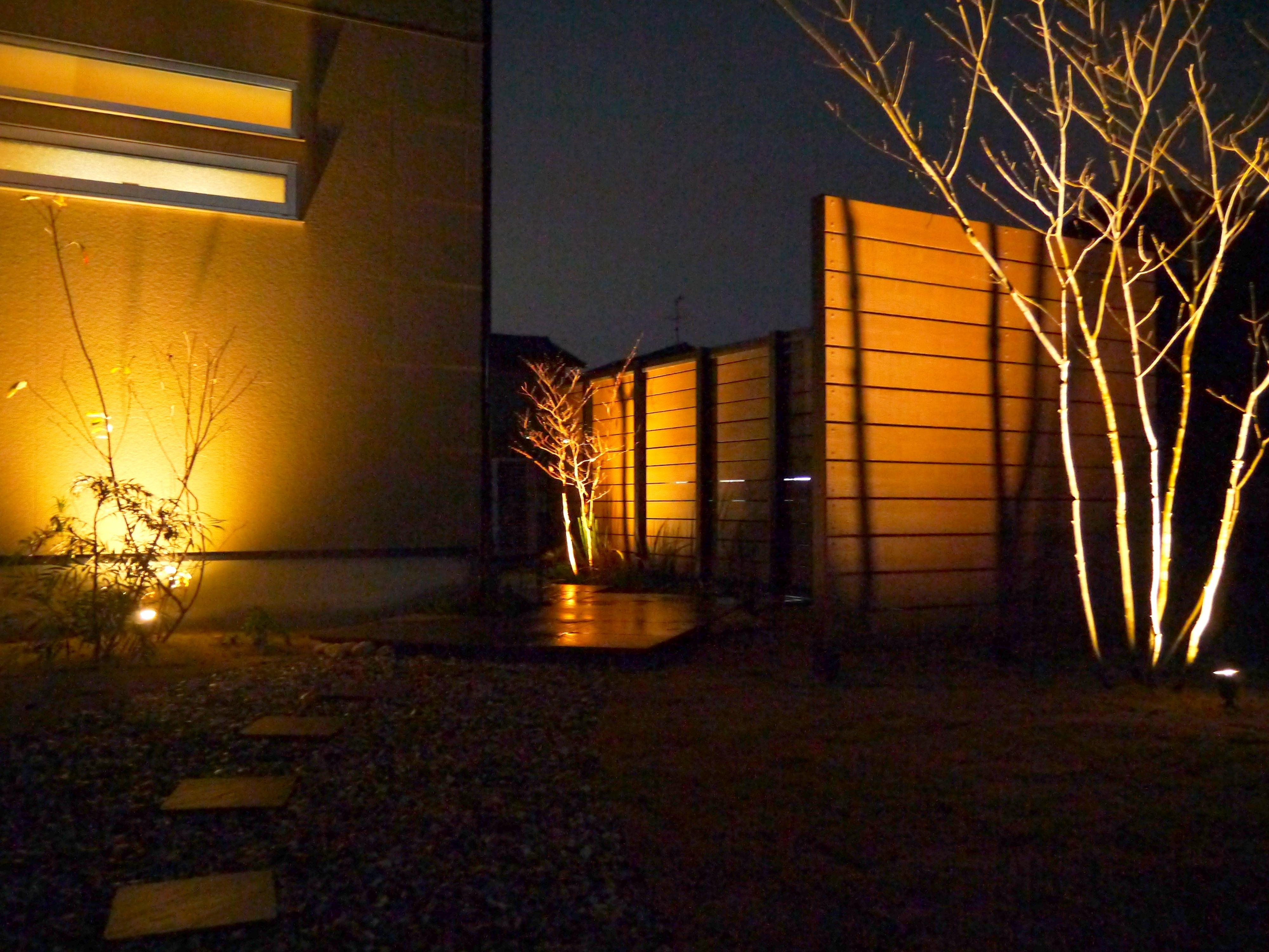 紅葉を楽しむ庭 lightingmeister pinterest gardenlighting