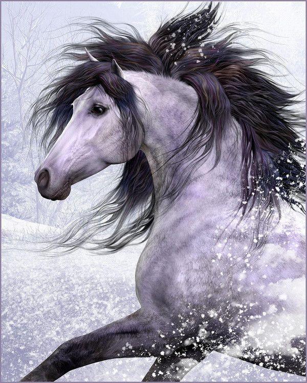 Cheval noir et blanc dada chevaux noirs cheval noir et blanc et cheval galop - Cheval a imprimer noir et blanc ...