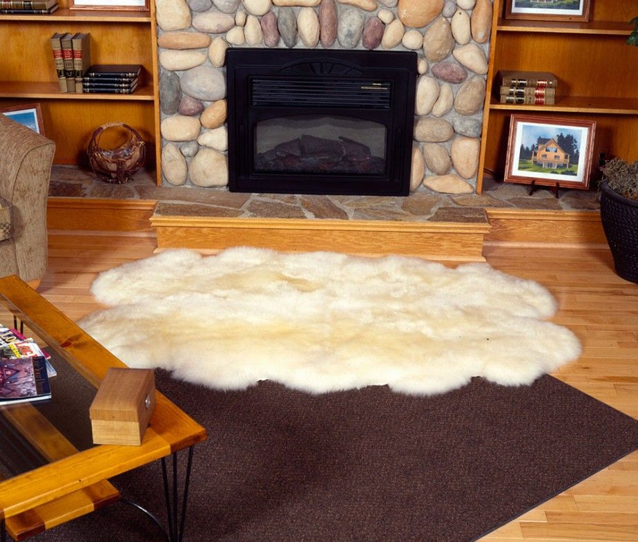 Rugs For In Front Of Fireplace Ideas Contemporary