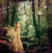 Fairies Dancing in the Forest - Bing Images