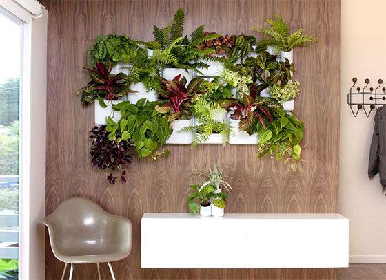 7 Cool Indoor Garden Systems Vertical Garden Wall Planter Vertical Wall Planters Vertical Garden Indoor