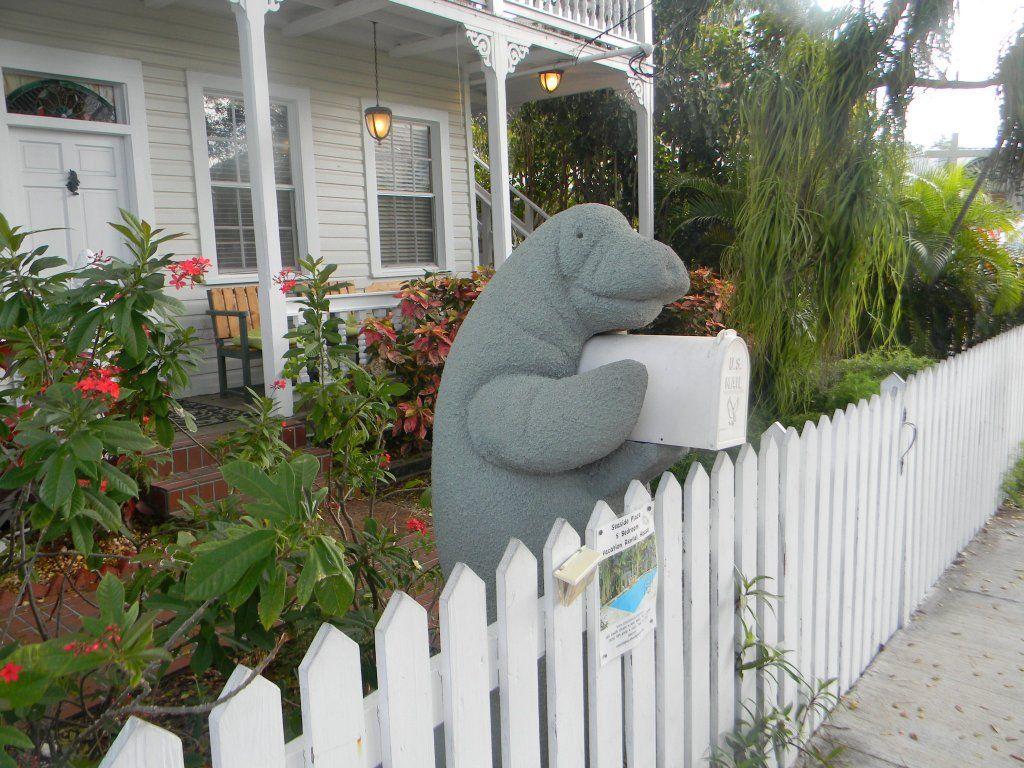 I Could Not Resist Taking This Photo Of The Manatee Mailbox During My Visit To Key West Florida April 2013 Coastal Pictures Bradenton Florida Key West Florida