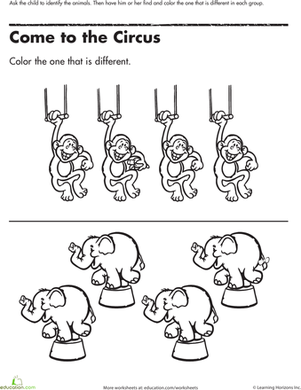 find the one thats different circus animals preschool worksheetspreschool - Animal Worksheets For Preschoolers