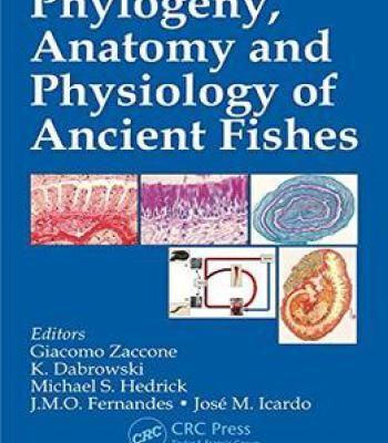 Phylogeny Anatomy And Physiology Of Ancient Fishes Pdf Anatomy And Pdf