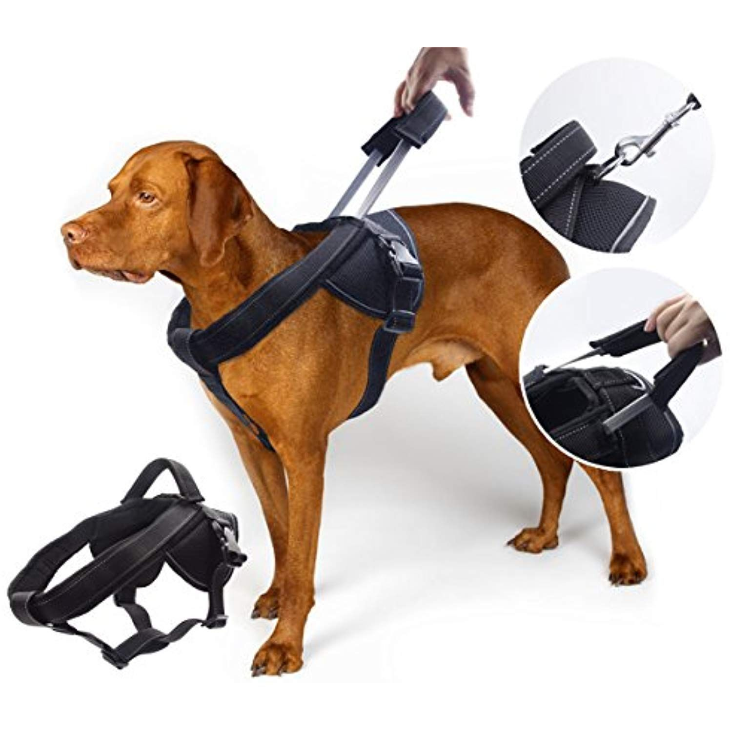 Yogadog Heavy Duty Dog Harness Soft Padded With Special