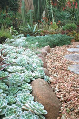 Using stone and rocks to edge your beds gives a timeless beauty to your borders. It's a relatively expensive option, unless you can source the rocks on your property, but it's durable and unlikely to go out of style. Boulders and pebbles are suited to natural gardens with informal, curving boders (shown).