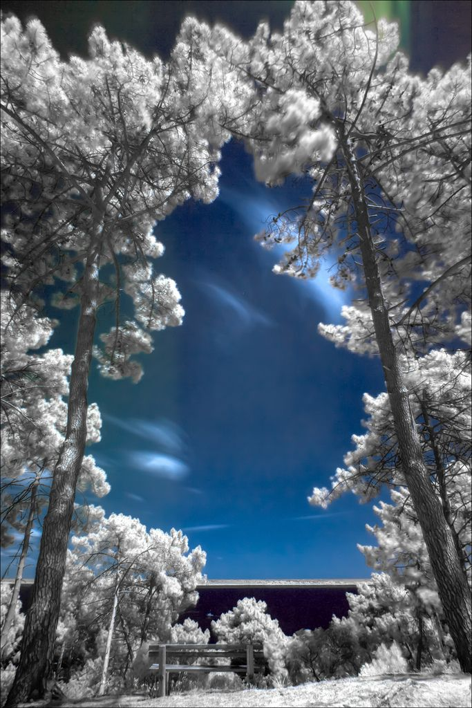 El Lago - Variation1 (by Fotografik33) Lake stations infrared from the base of leisure Bombannes. Lake Hourtin and Carcans, France .