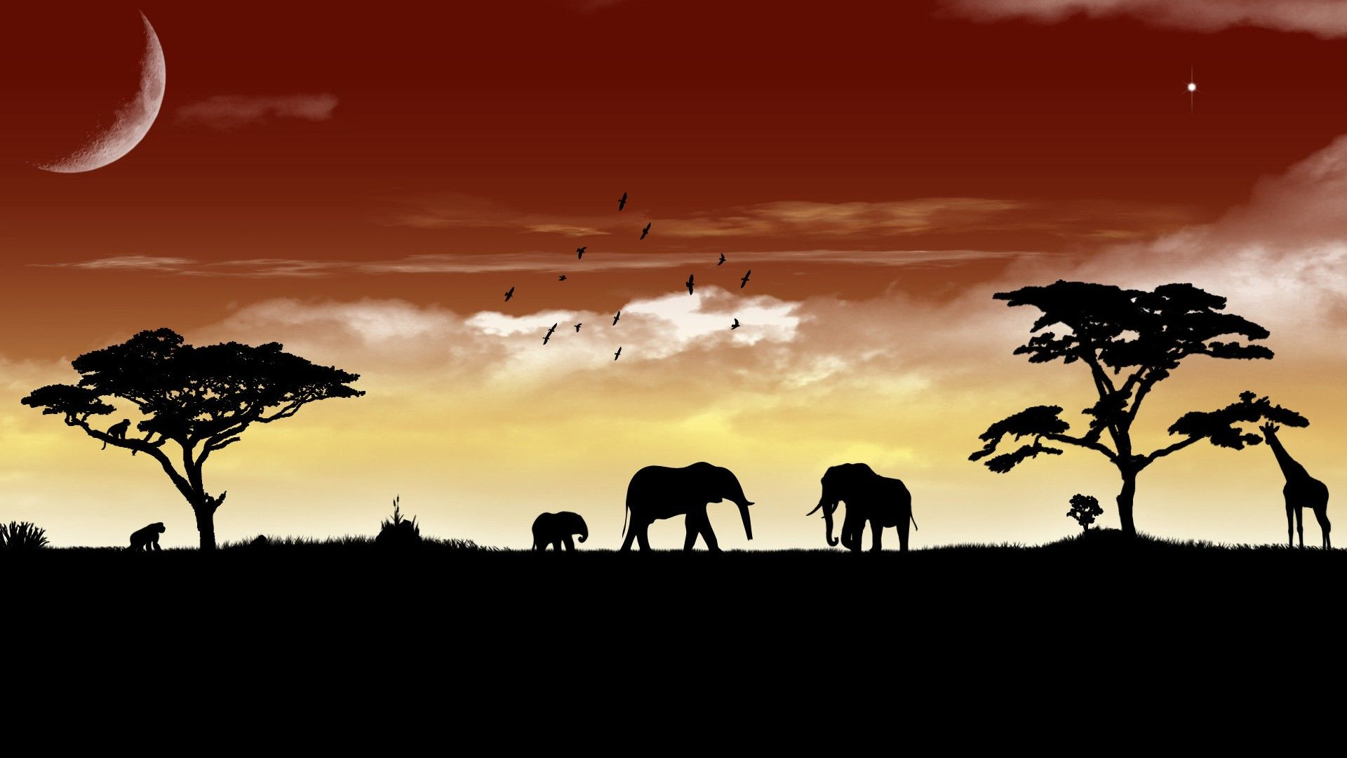 African Wildlife Wallpapers Hd Animals Wallpaper Dudaite Com Animal Wallpaper Elephant Wallpaper Elephant Pictures