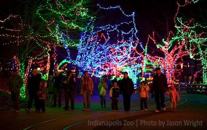 Christmas At The Zoo.Indianapolis Zoo For Christmas Indy Indiana