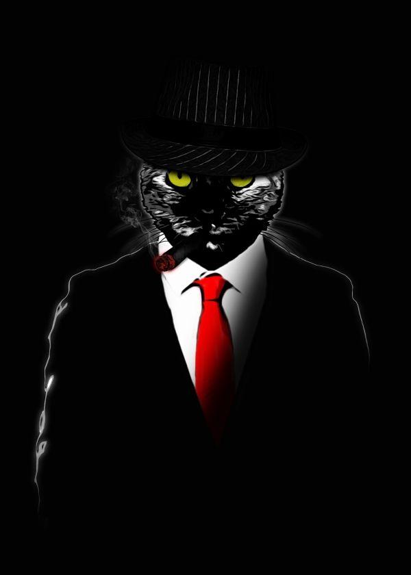 Cat In A Mafia Suit Okay Black Cat Art Cat Artwork Creepy Cat