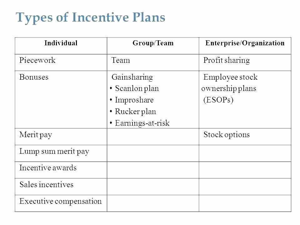 Professional Compensation Plan Template Beautiful Professional Employee Pensation Plan Templat How To Plan Lesson Plan Template Free Middle School Lesson Plans