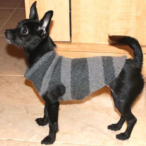 Recycled Dog Sweater ~ 				 				 A quick photo tutorial on how to make a dog  sweater out of a used thrift store sweater sleeve, an old sweatshirt or other human garment made out of warm, knitted fabric.