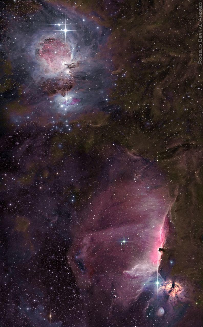 orion nebula naked eye - HD793×1280