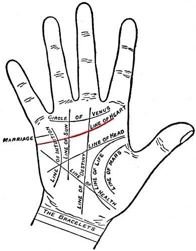 love in the palm of your hand: palmistry basics