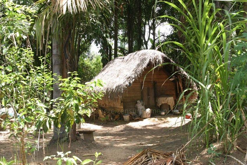 exotische reizen suriname marron hut in de jungle maroons in surinam pinterest. Black Bedroom Furniture Sets. Home Design Ideas