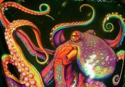 Pin by Christine Layden on Beautiful Octopus! in 2019 ...