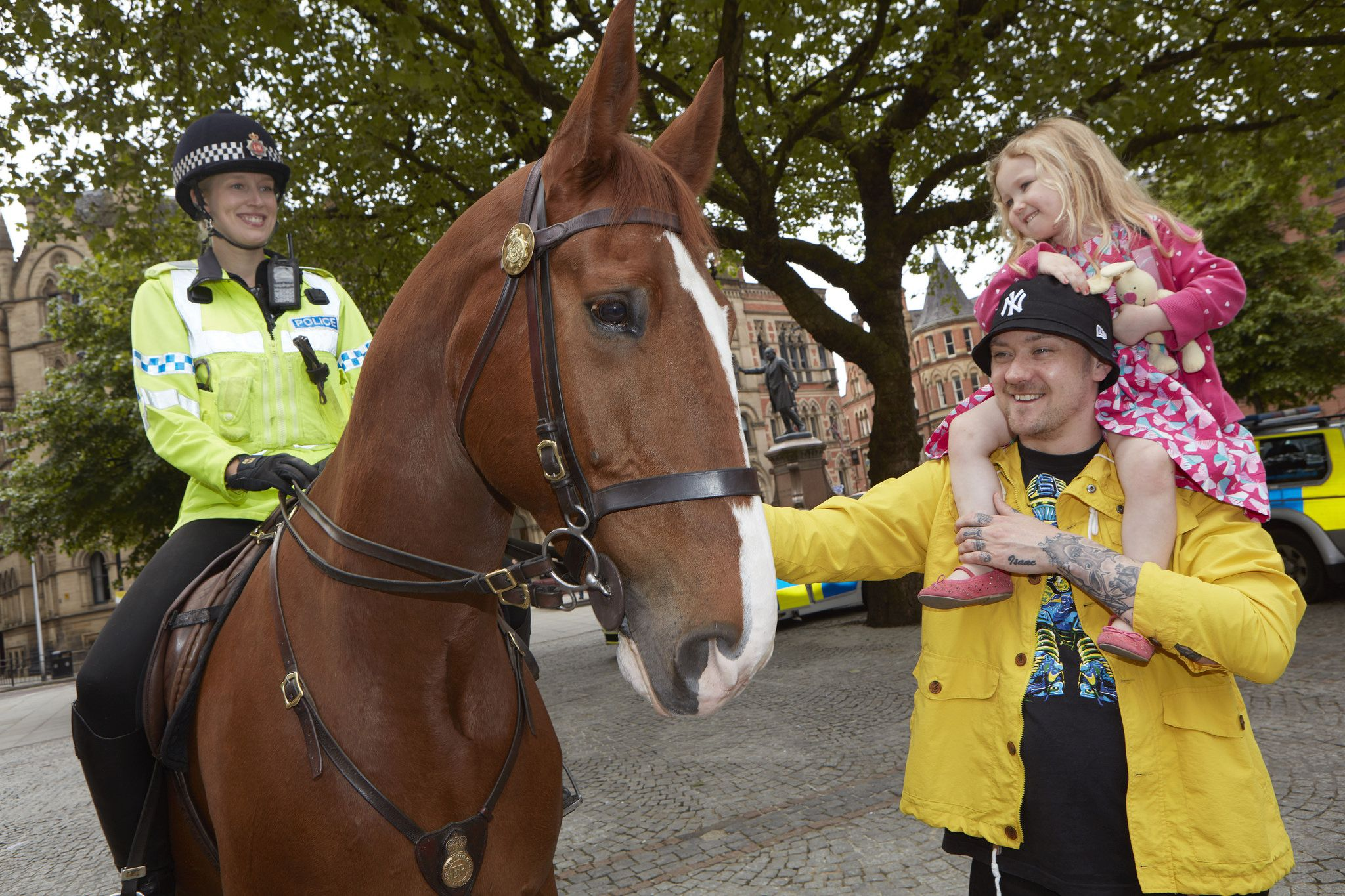 Horse Road Safety Campaign British horse society, Horses