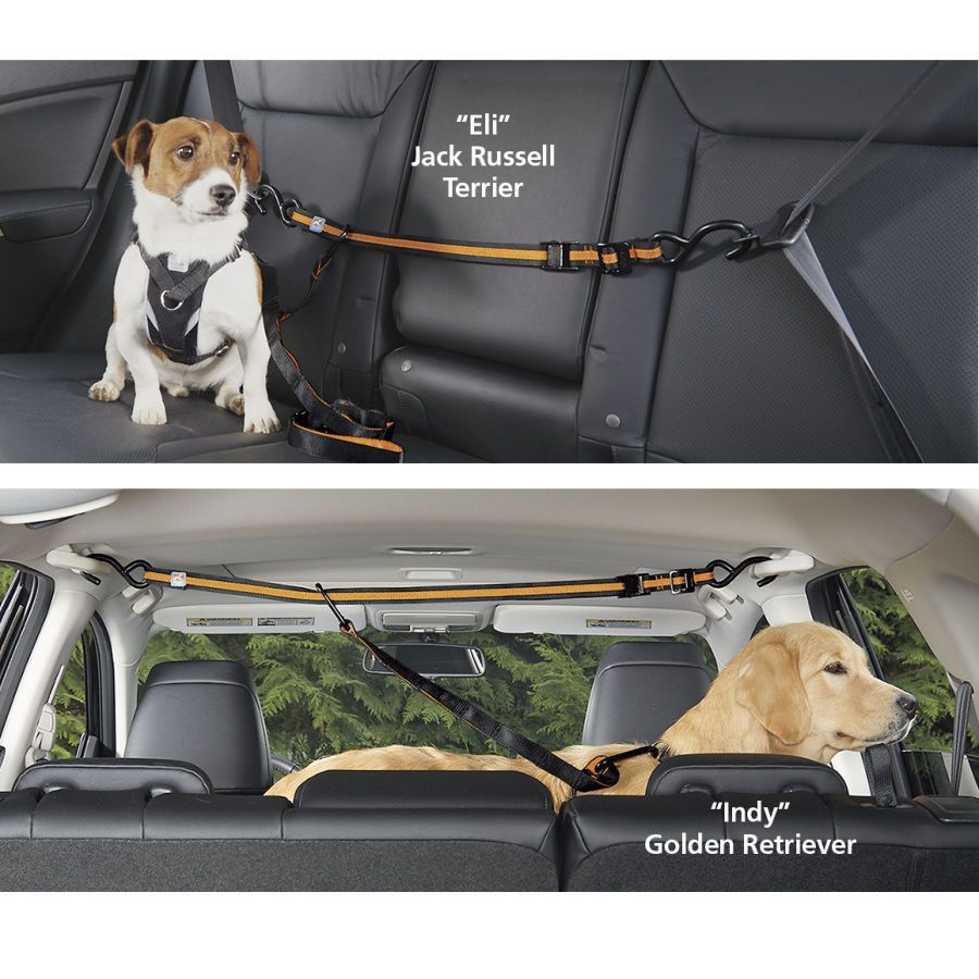 Kurgo Auto Zip Line With Leash Dog Beds Gates Crates