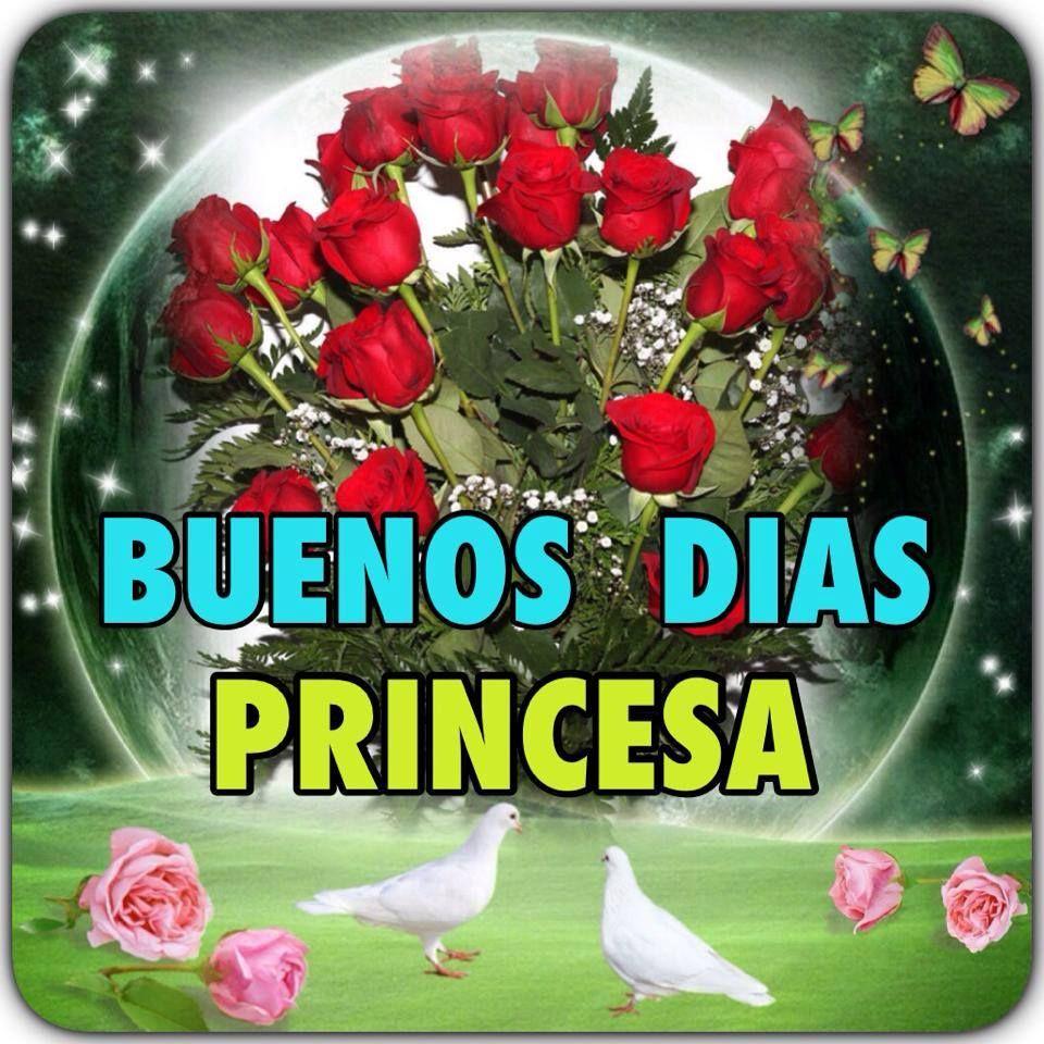 Buenos Días Imagen 8669 Buenos Días Princesa Palomas Ramo De