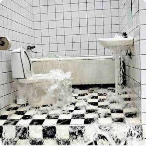 Sign In Mold In Bathroom Oriental Rug Cleaning Bathroom Appliances
