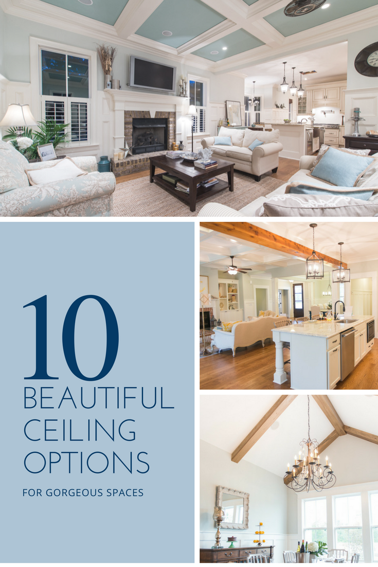 10 Beautiful Ceiling Options Construction Ideas Pinterest Home