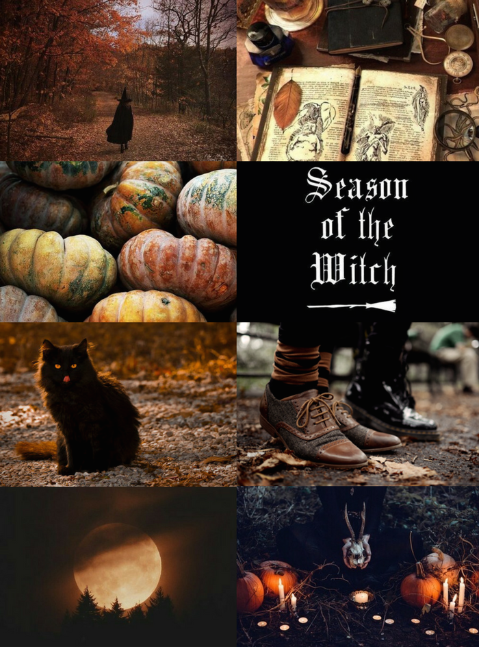 "Moodboard Maker Witch Aesthetics // Autumn Witch ""requested "" Cake Witch"
