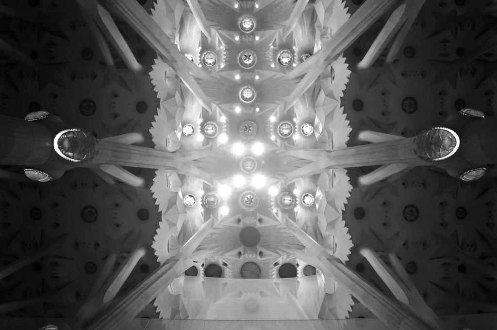 Ceiling of the stunning #sagradafamilia in #barcelona #barca #antonigaudi #Catalonia #spain #wcsfoto #photography