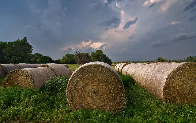Storm over the Hay Bales