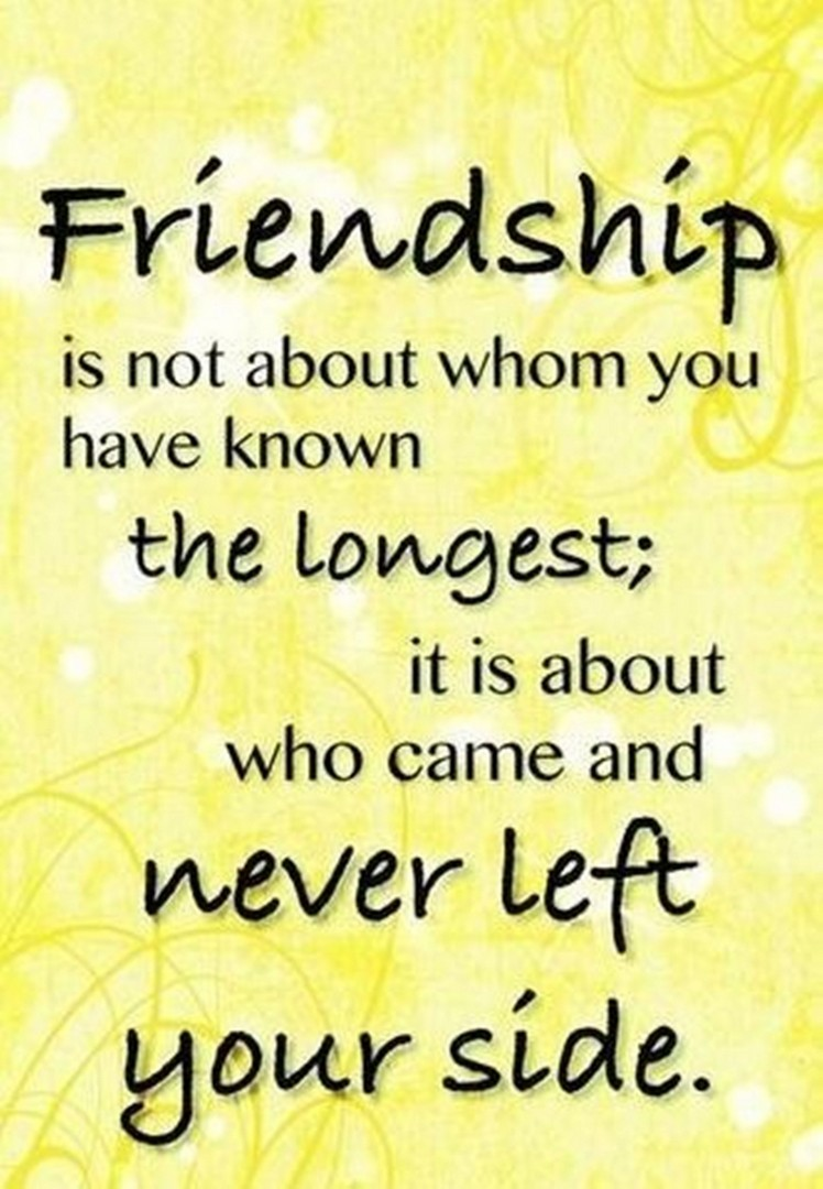 Quotes about Amazing friendship (4 quotes) in 4  Friends