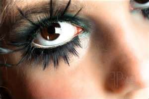 Image Search Results for eye make up extreme