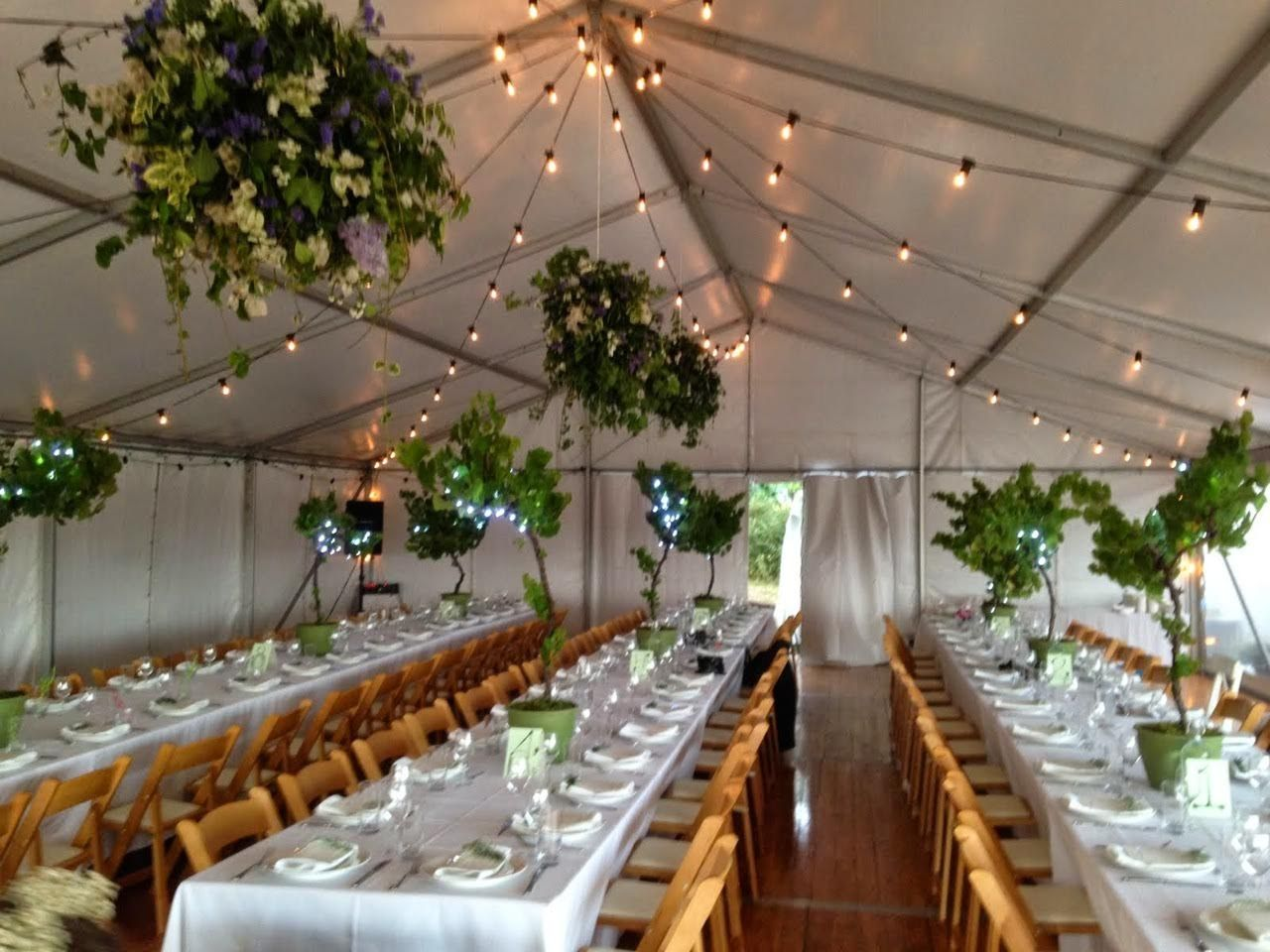 Marquee Structure Festoon Lighting Wooden Padded Folding