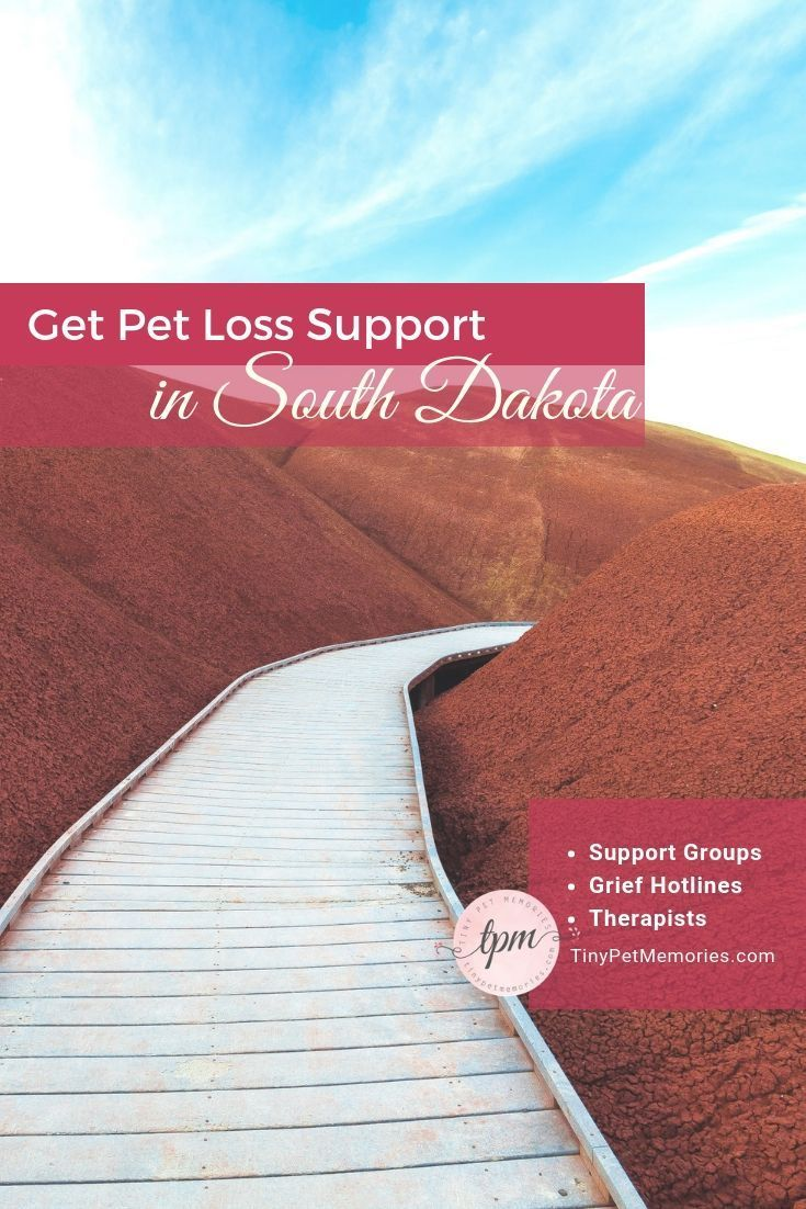 Many will dismiss your petgrief. Find a petlosssupport