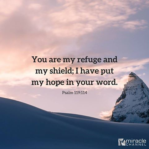 Image result for psalm 119 114