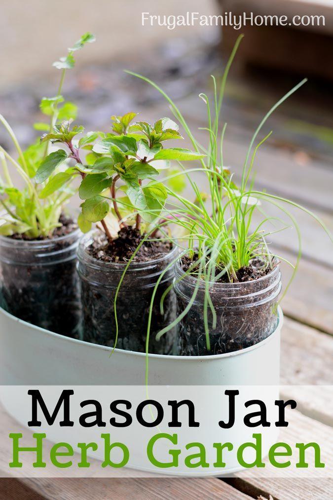 Diy Windowsill Herb Garden Simple Garden Gift Kitchen 400 x 300