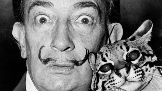 The artist Salvador Dalí with his ocelot Babou.