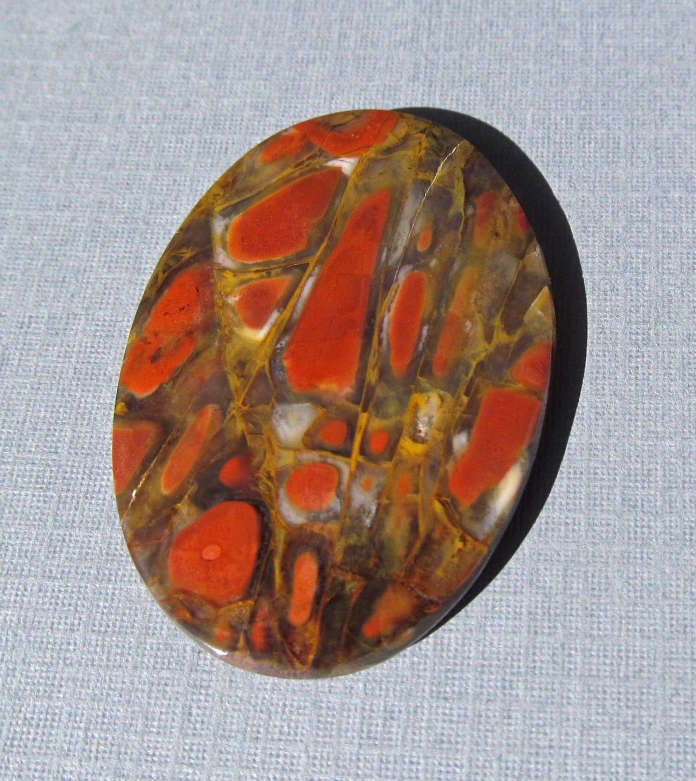 Red Cell Dinosaur Bone Cabochon Top Quality-48 Cts. 39mm L X 27mm W ...