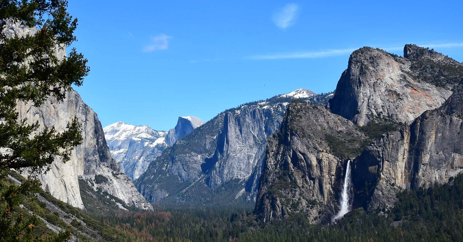 Beautiful Yosemite 🌿 © by Hannah Backes