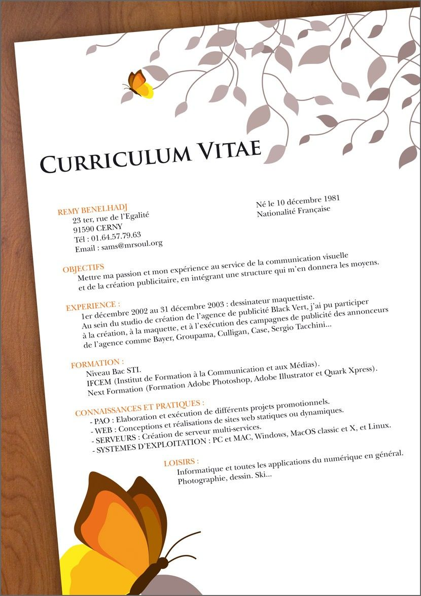 14 Resume Templates Free Download doc Resume Template
