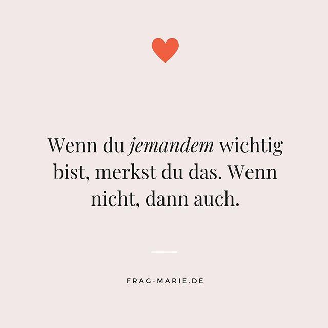 valentineamp;#039;s day quotes #valentinesday FragMarie | Schluss mit Single (frag.marie) Instagram-Fotos und -Videos