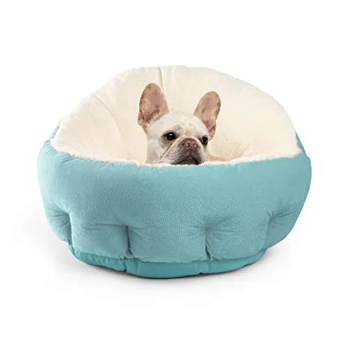 Best Friends By Sheri Orthocomfort Jumbo Large Deep Dish Cuddler Best Petsep Com Dog Bed Cushion Cat Bed Modern Pet