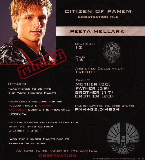 The hunger games Peeta profile