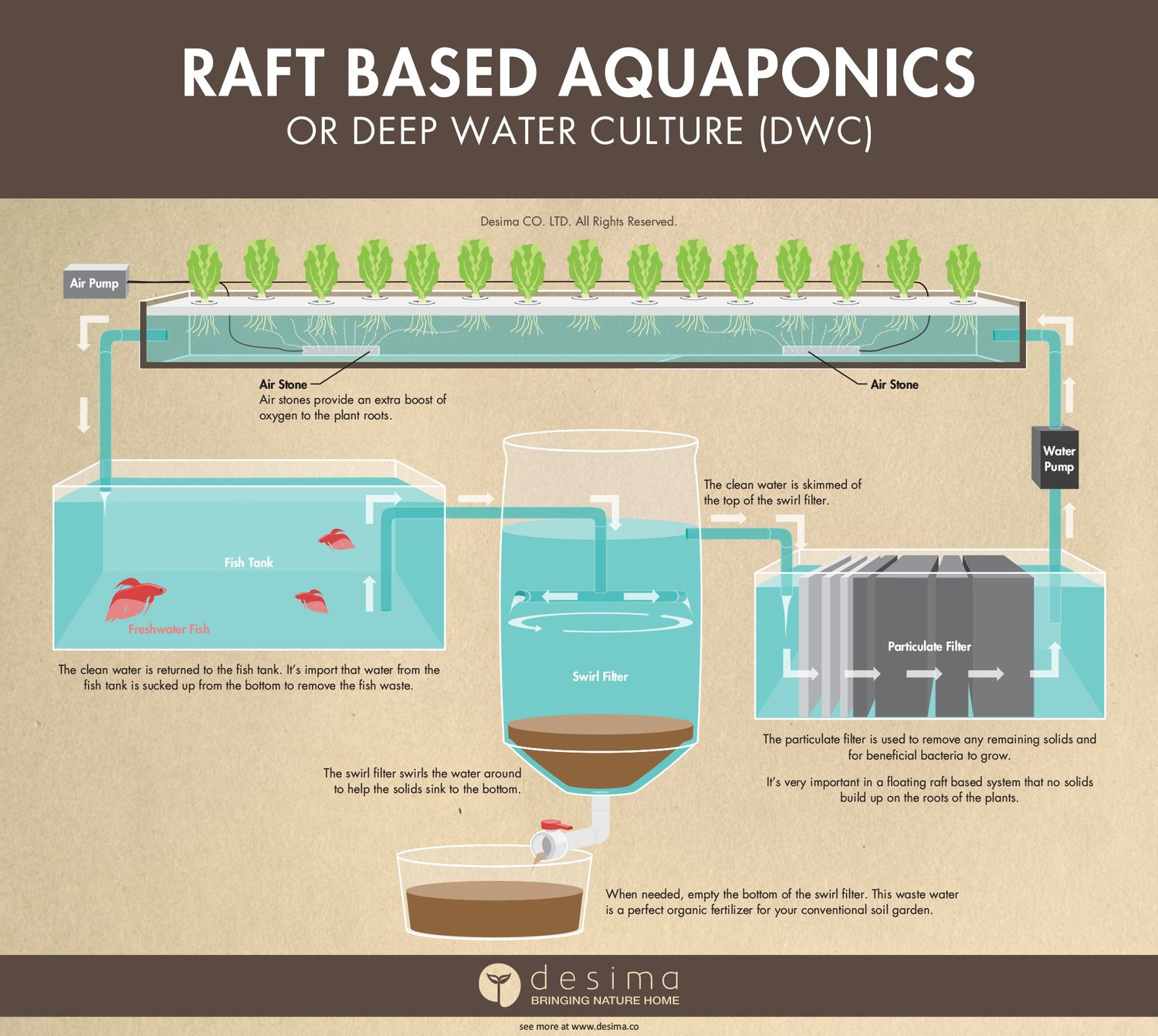 different types of aquaponic systems deep water infographic and