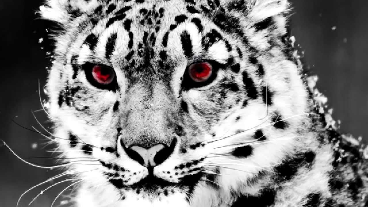 Martin Garrix Animals (Instant Party! Trap Remix)
