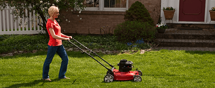 Pin On Lawn Care
