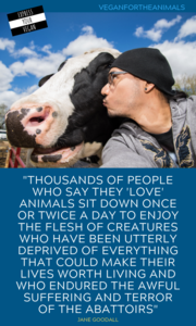 Vegan Quotes #vegan #veganquotes #veganlife #veganfacts #veganquotes Vegan Quotes #vegan #veganquotes #veganlife #veganfacts #veganquotes