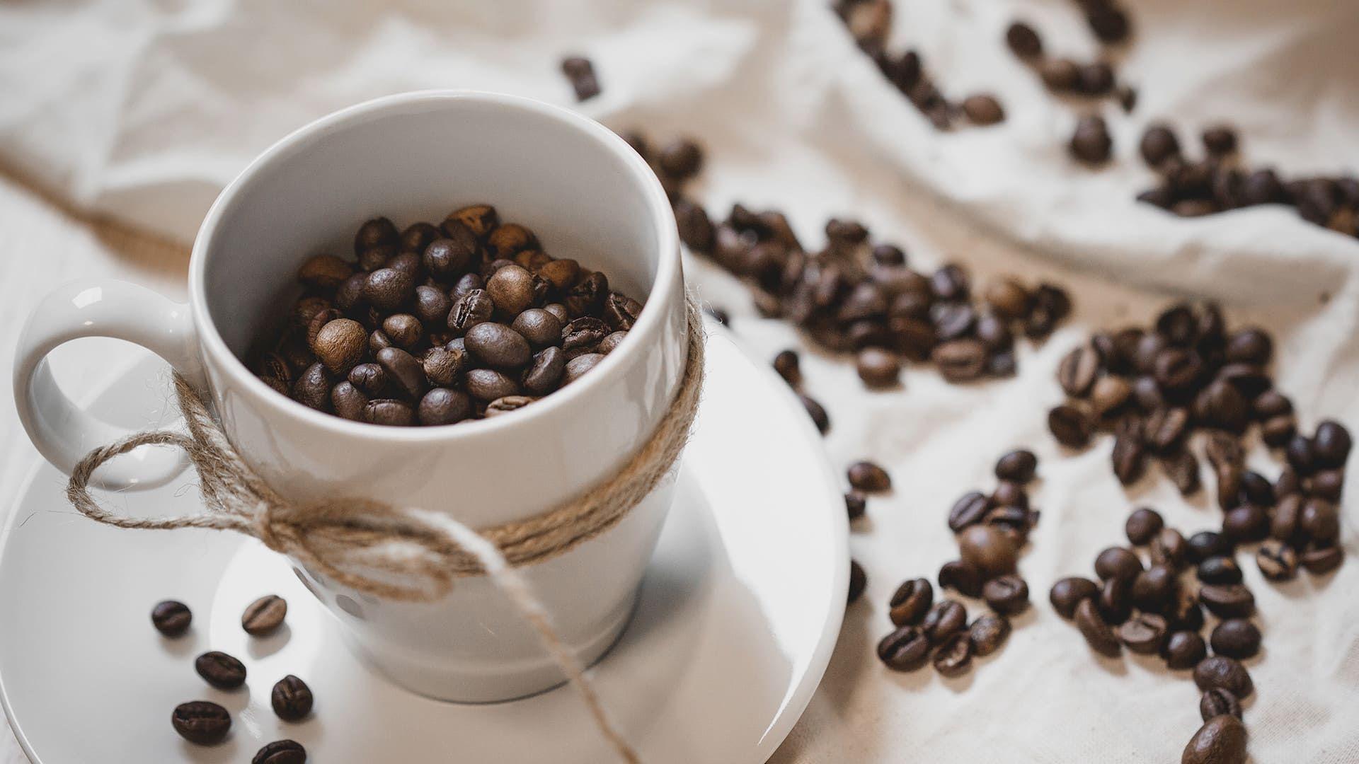 menuimg1 Free coffee, Brunch burger, Coffee varieties