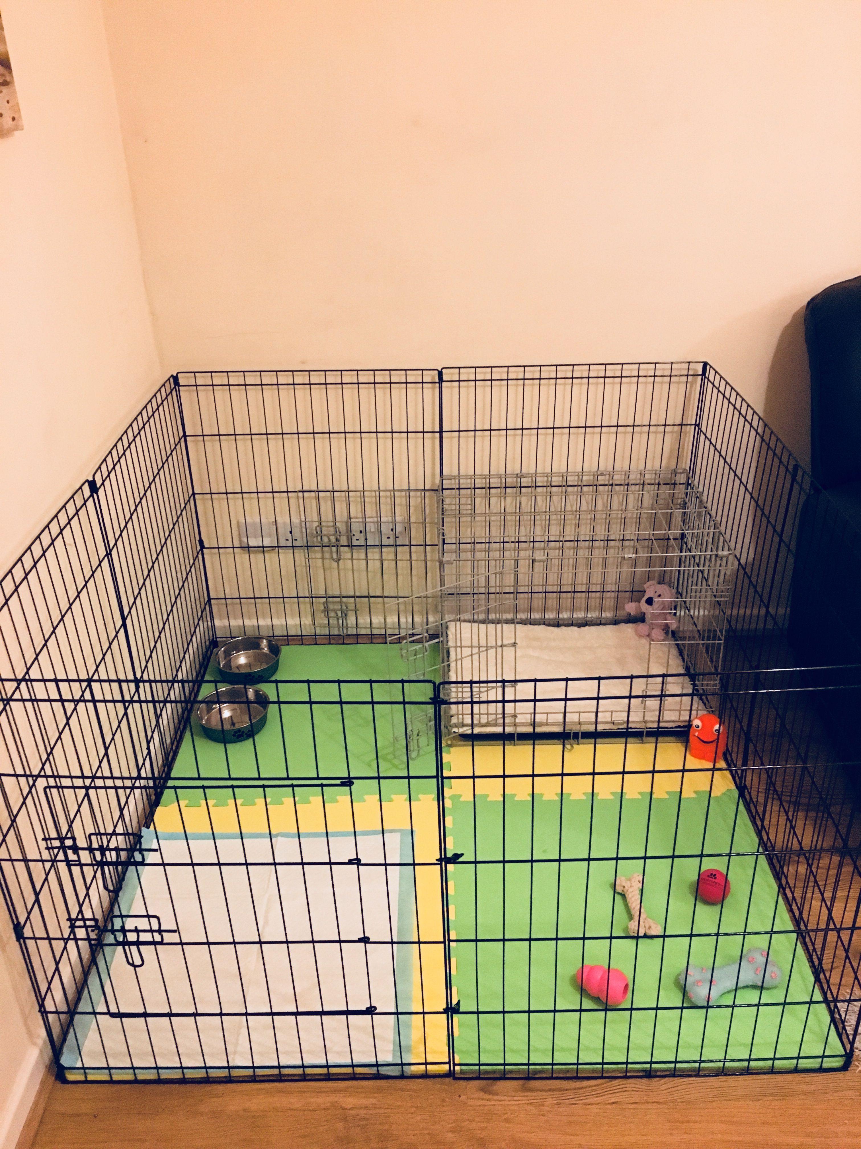 Dog Playpen Crate Layout Puppy Playpen Dog Playpen Indoor Dog Playpen
